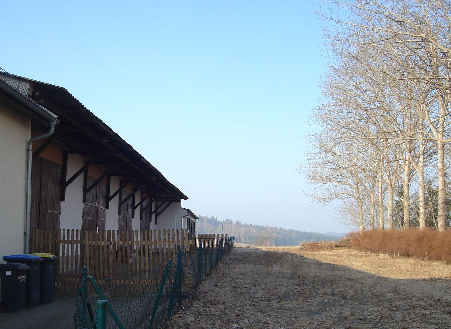 Die einsturzgefährdete Lagerhalle/Festhalle vor dem Abriss